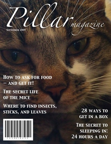 A magazine cover for Pillar Magazine, September 2009, with the following headlines: 'How to ask for food — and get it!', 'The secret life of the mice', 'Where to find insects, sticks, and leaves', '28 ways to get in a box', 'The secret of sleeping in: 24 hours a day'